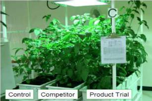Микрозим для растений